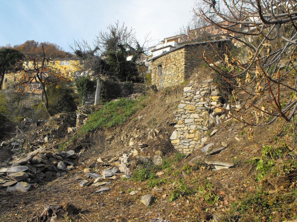 Le mur du futur poulailler, à relever en pierre sèches